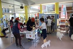 青森県動物愛護センターで、トークセッション「大ちゃんが働く犬になるまで」と災害救助犬のデモンストレーションを行いました(青森市)。