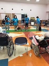 特別養護老人ホーム「かいふう」でJAHA(日本動物病院協会)公認のセラピー活動を行いました(青森市)。