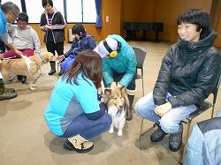 NPO法人「光の岬研究会」の子供たちがセラピー犬とのふれあいを行いました(青森市浪岡)。