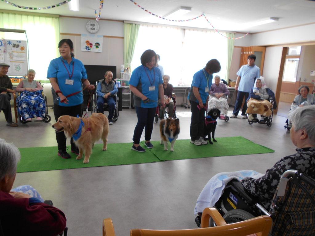 特別養護老人ホーム「やすらぎの郷」でセラピー活動を行いました(南津軽郡田舎館村)。