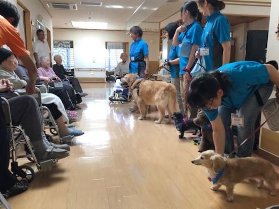 特別養護老人ホーム「ときわ」でセラピー活動を行いました(南津軽郡藤崎町)。