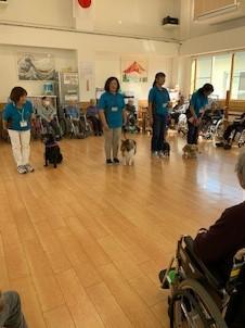 介護老人保健施設「平成の家」でセラピー活動を行いました(弘前市)。