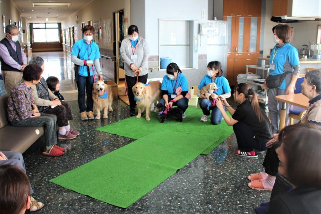 グループホーム「いこい」でセラピー活動を行いました(南津軽郡藤崎町)