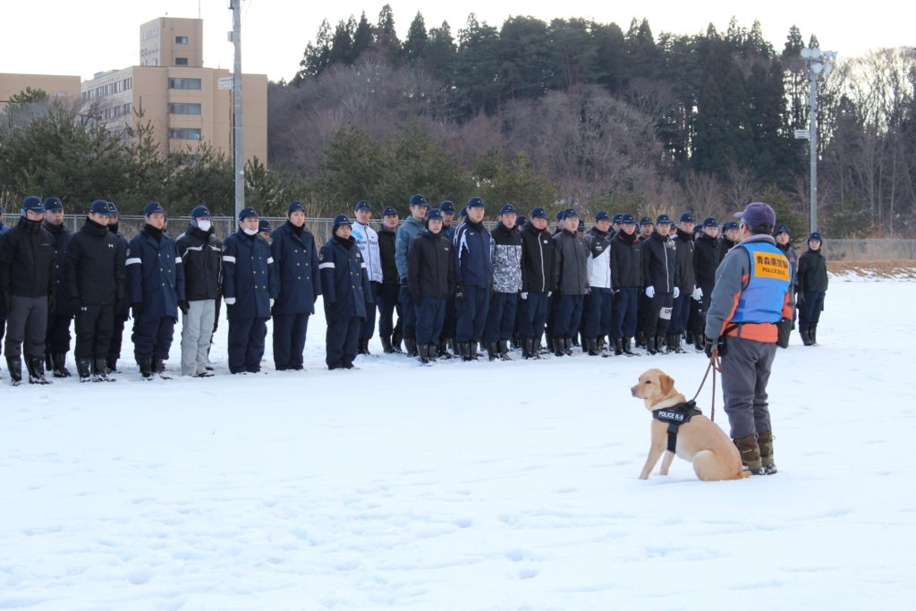 警察学校で警察犬による雪中遭難者捜索のデモンストレーションを行いました(青森市)