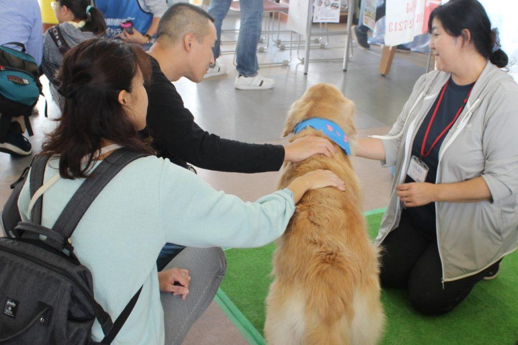青森県動物愛護センターで開催の「秋の動物ふれあいフェスティバル2019 ~ いやし・いやされ元気に長生き ~ に参加しました(青森市)。