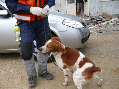 岩手県大船渡市で、行方不明者の捜索活動(第8回)を行いました。