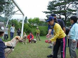 ボーイスカート青森県キャンポリーで、警察犬との触れ合いを行いました(むつ下北自然の家)。